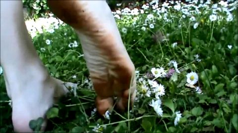 Tiny dirty feet crush flowers and grass